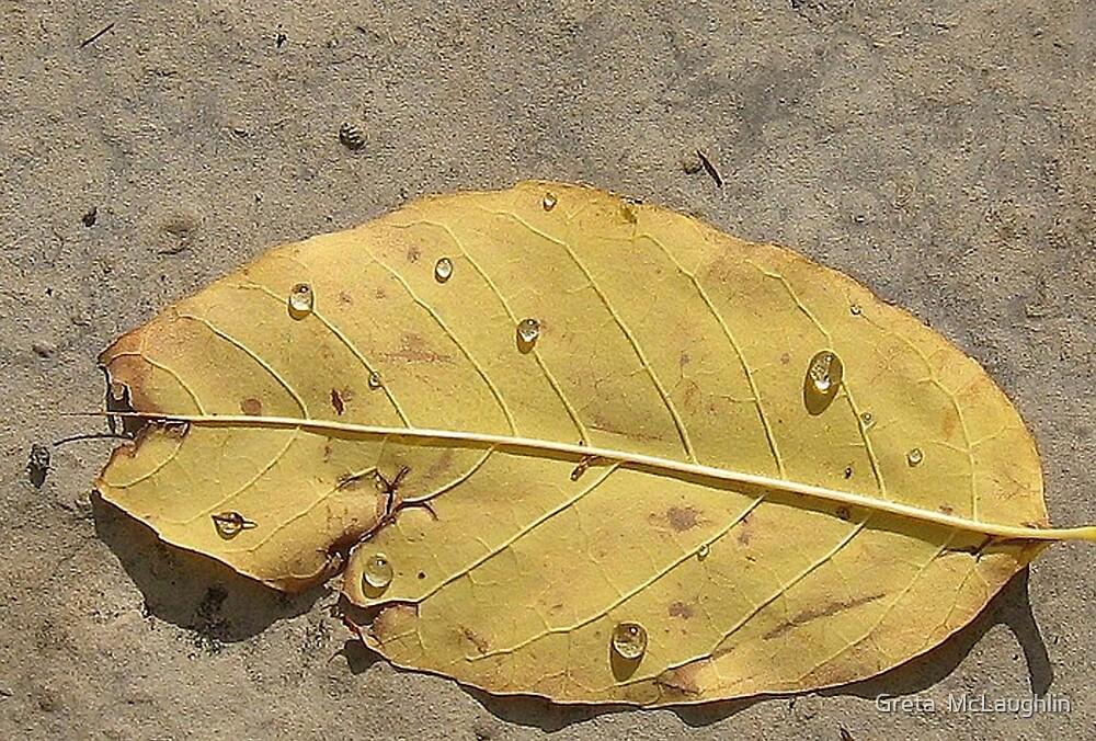 Crying Leaf by Greta  McLaughlin