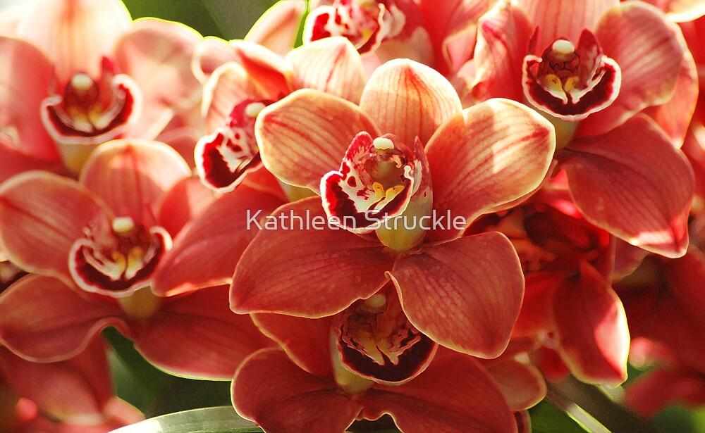 Orange Orchids by Kathleen Struckle