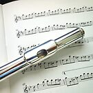 Pause for Breath - Flute and Sheet Music von BlueMoonRose