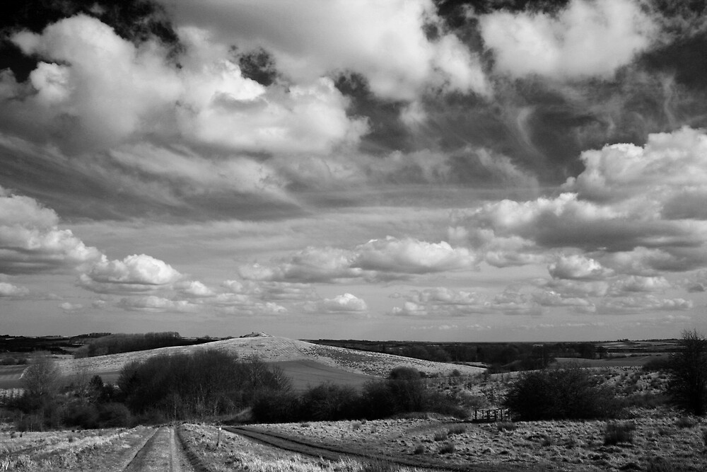 Fulletby Landscape #10 by David Pearson