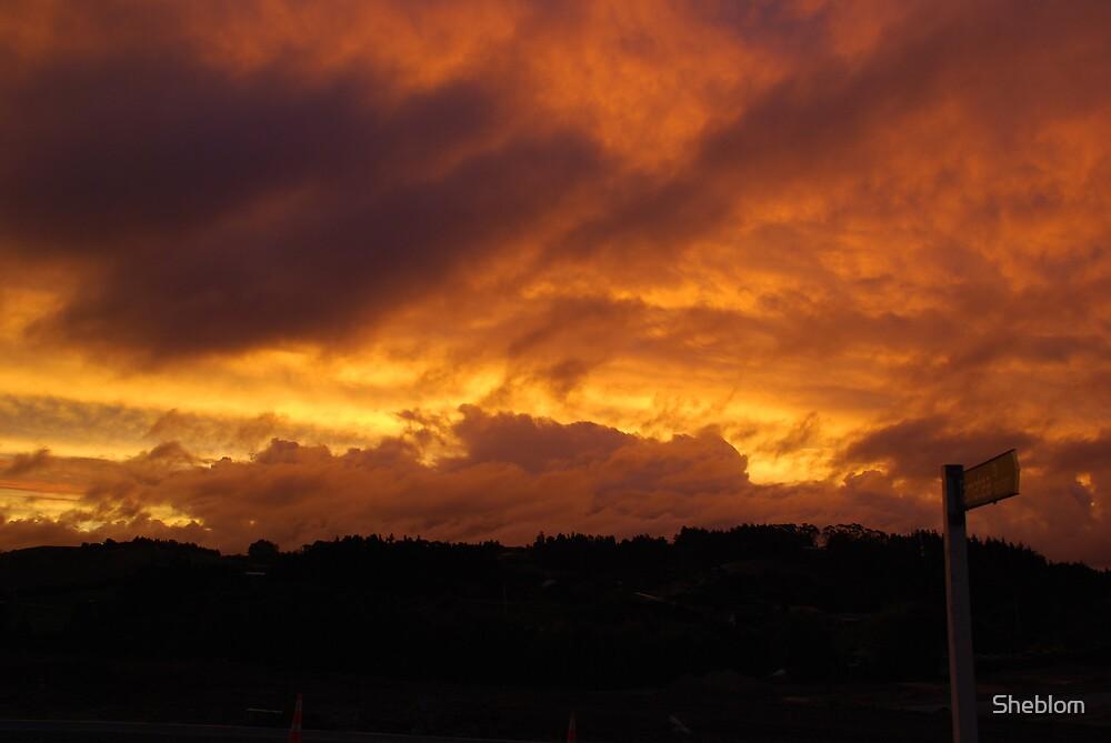 Sunset by Sheblom