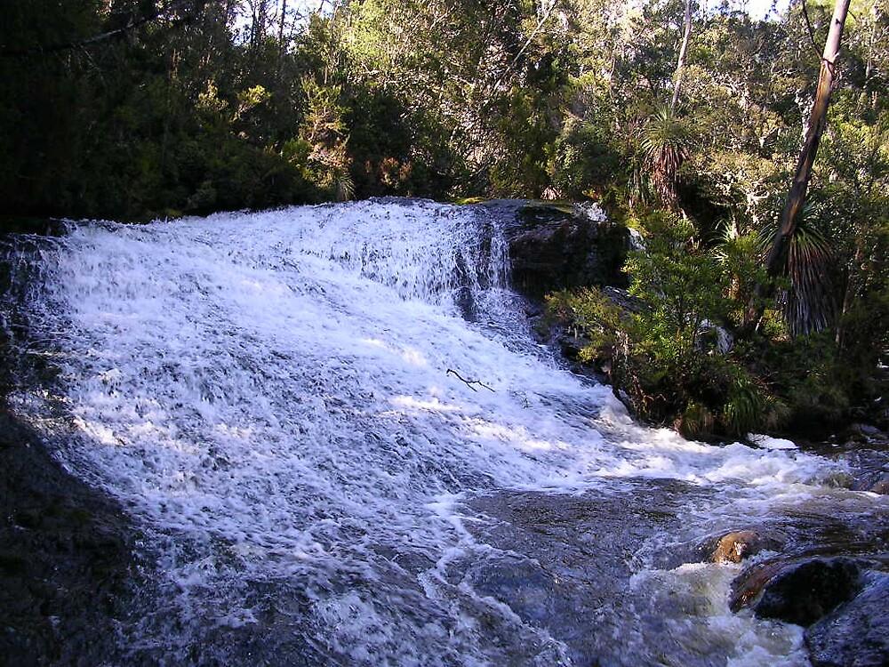 Creek by Bruce Westendorf