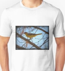 Hooded Oriole (Female) T-Shirt