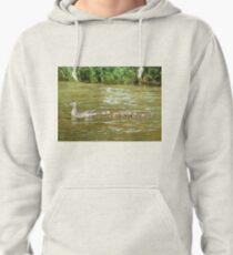 A Dozen Ducklings Pullover Hoodie