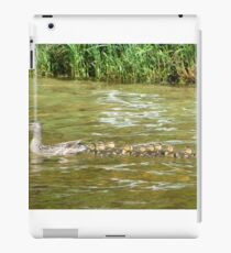 A Dozen Ducklings iPad Case/Skin