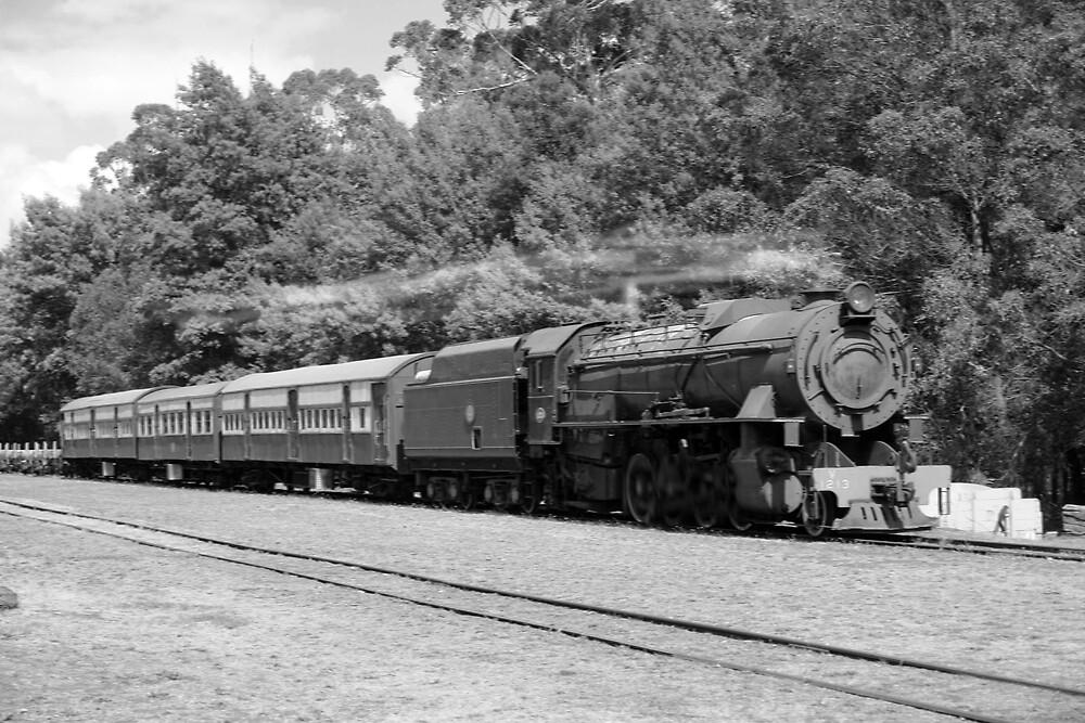 Train at Pemberton by georgieboy98