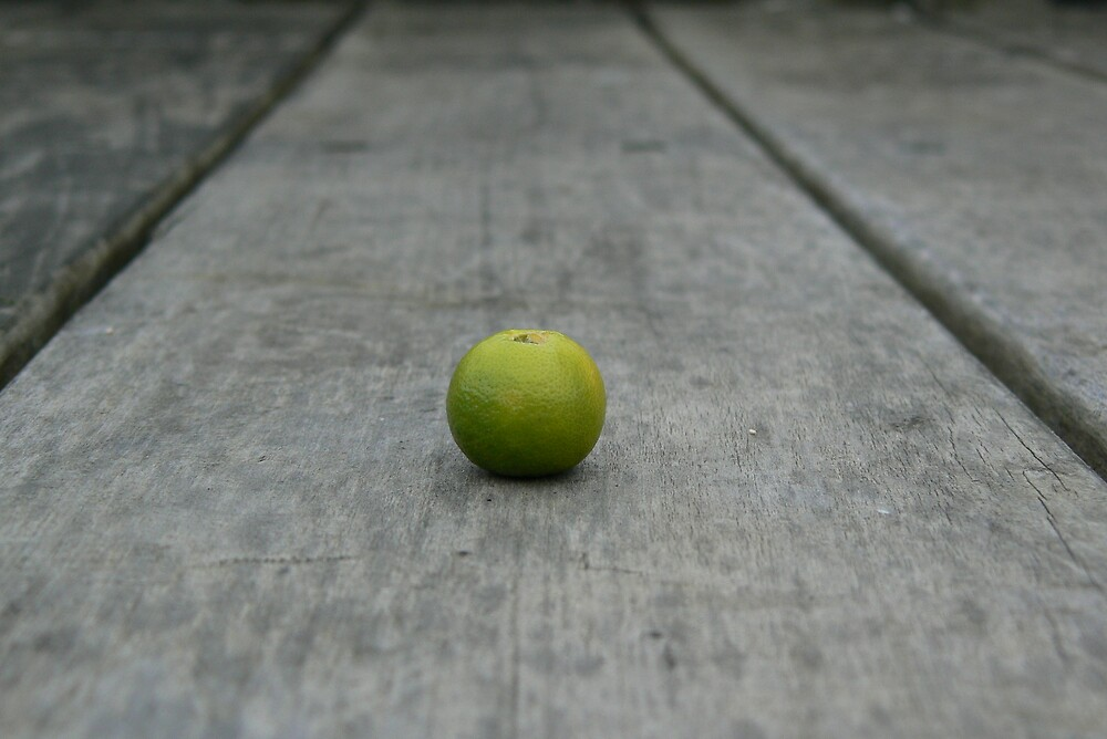 Lime No. 1 by Derek Kan