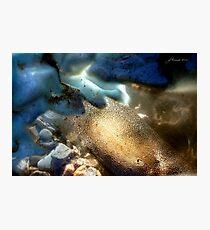 Sea-Through Photographic Print