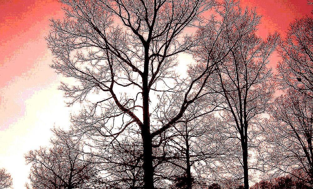 Winter Glory by mpeakclewett