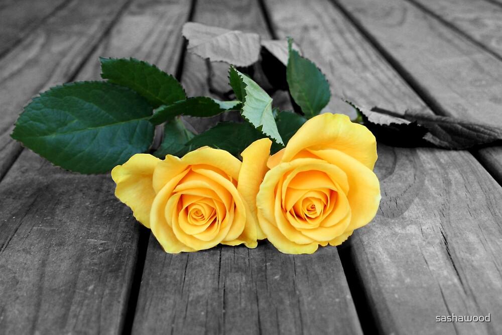 yellow roses by sashawood
