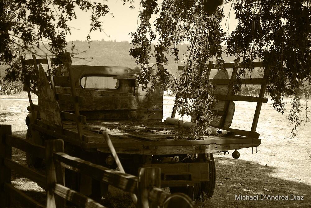 Truck of Burden by Michael D'Andrea Diaz