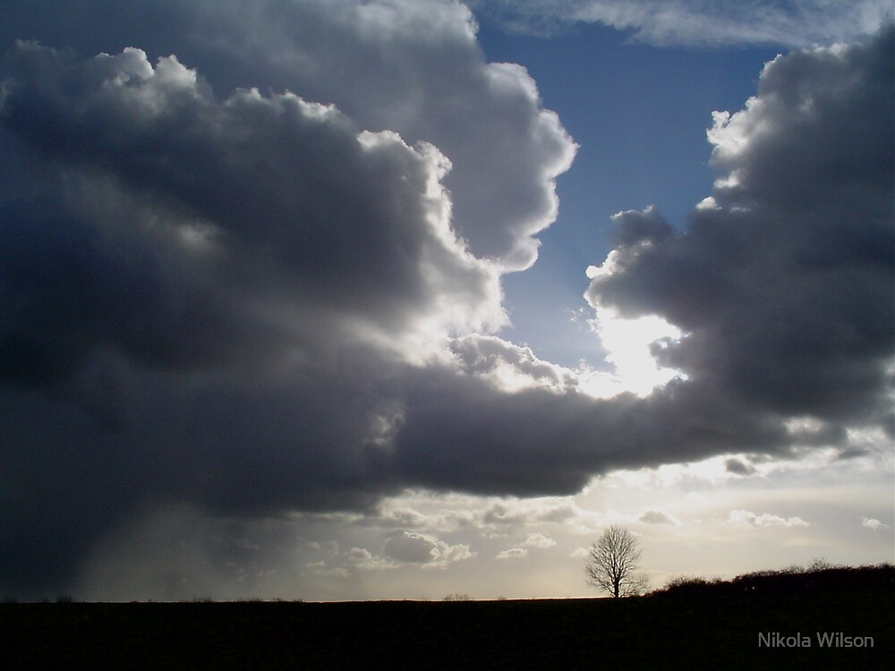 Sky clouds and the little ash by Nikola Wilson