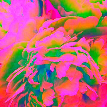 Psychedelic Abstract Peony Floral  by SweetDominique