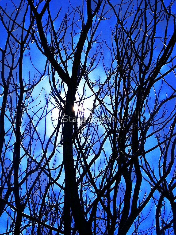 Shades of Blue Throw the Tree by Stacy Colean