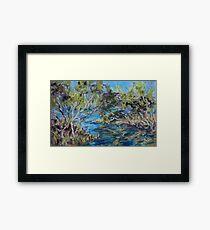 Laurieton mangroves - plein air Framed Print