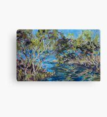 Laurieton mangroves - plein air Canvas Print