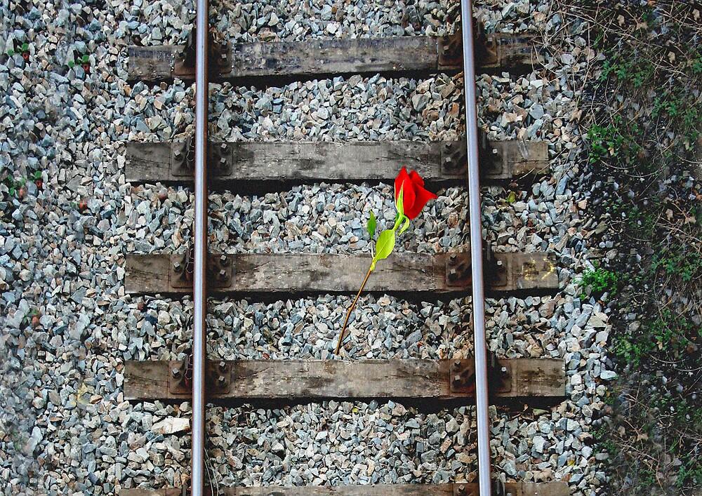 BEAT THAT TRAIN by Spiritinme