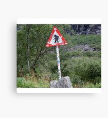 Trolls crossing Canvas Print
