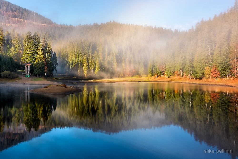 lake in foggy spruce forest in mountains by mike-pellinni