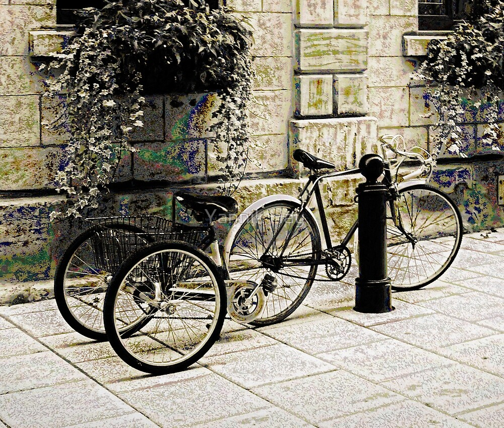 Tandem Bicycle and Flowers by Yannik Hay