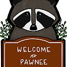 Welcome to Pawnee by quotify