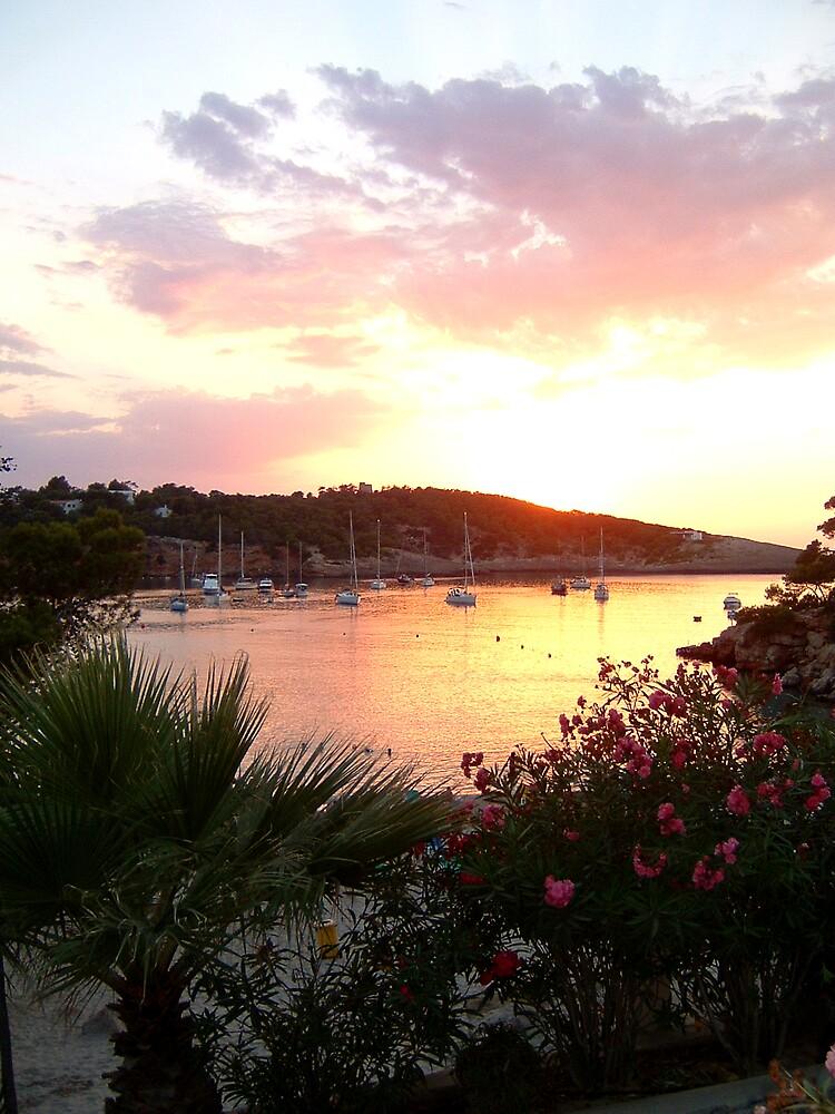 Ibiza sunset by barryohara1