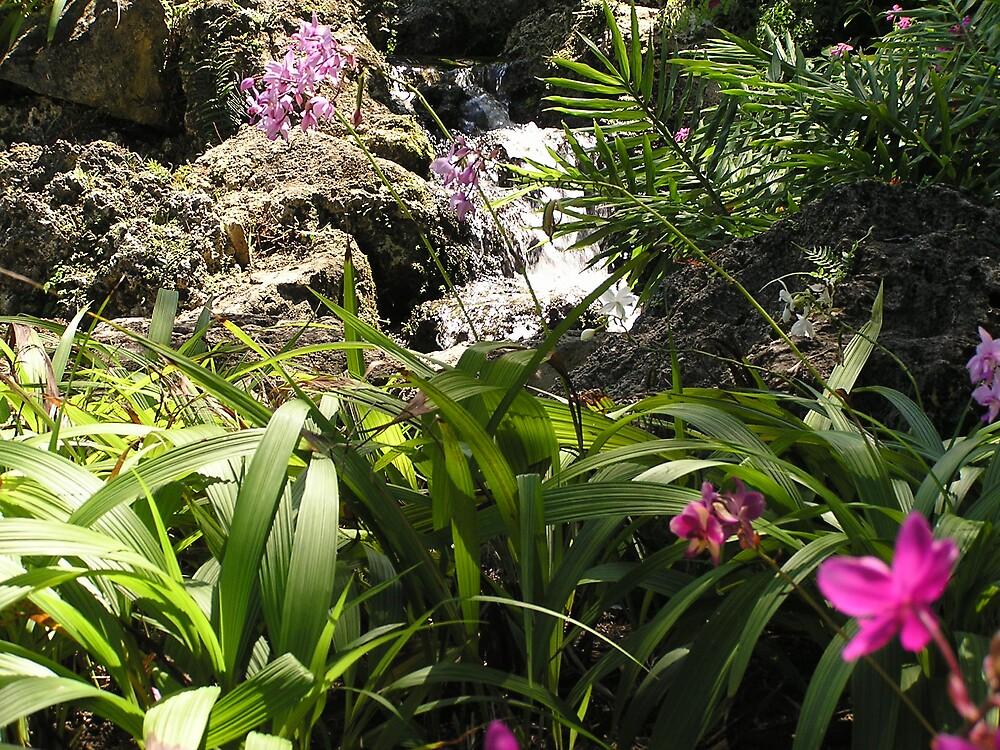 Barbados Flora 2 by Christine Frydenborg Dargon
