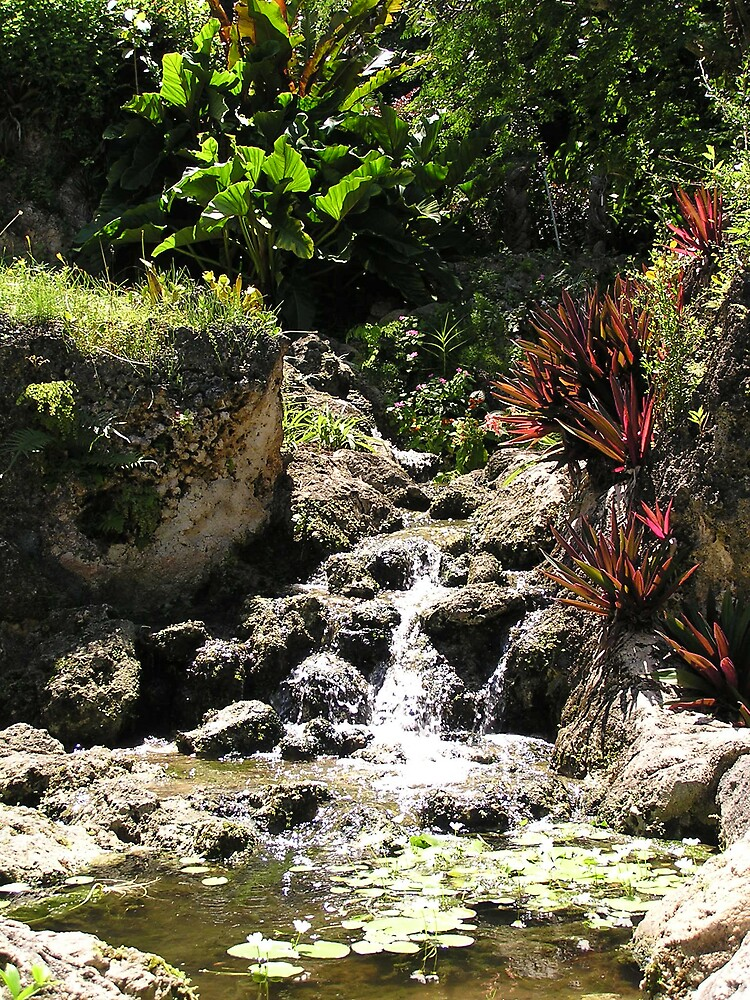 Barbados Waterfall 2 by Christine Frydenborg Dargon