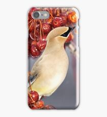 Feathers and Cherries iPhone Case/Skin