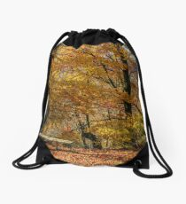 forest in red foliage on sunny autumn day Drawstring Bag