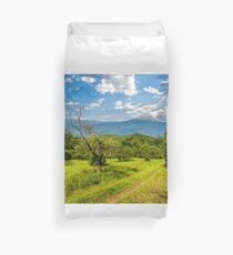 Winter in mountains meets spring in valley Duvet Cover