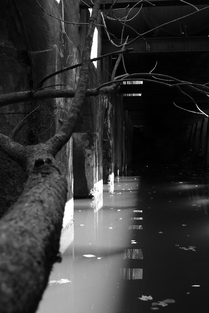 lllumination by dreckenschill