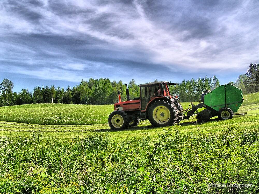 Harvest time by Annika Strömgren