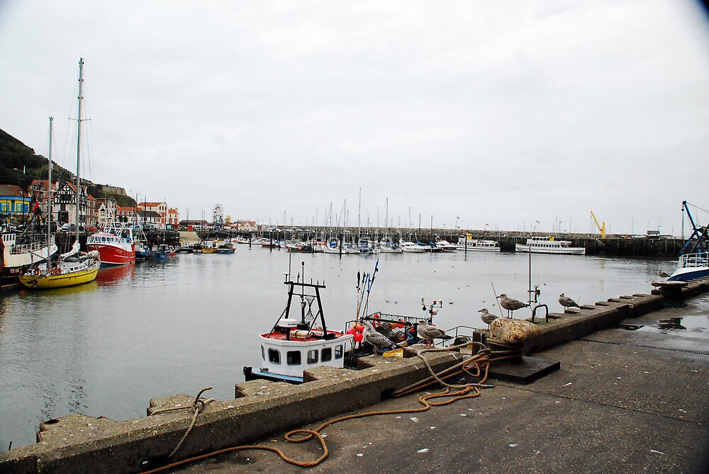 The Harbour,  Scarborough by dougie1