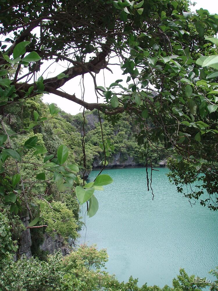 Angthong National Park - Koh Samui 2 by JillSolo