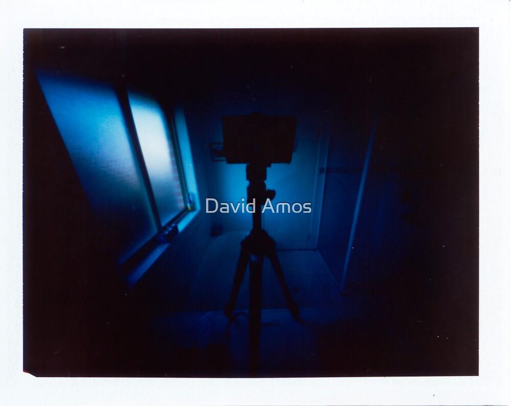 "Pinhole Polaroid - ""Bathroom"" by David Amos"