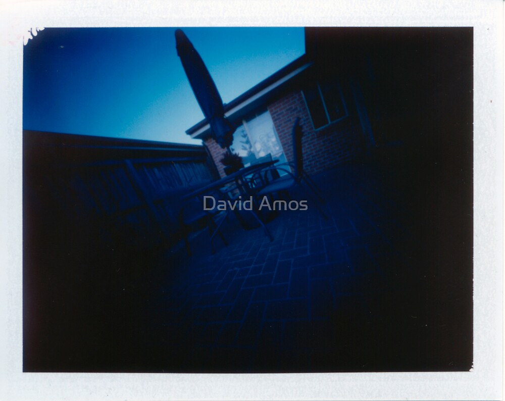 "Pinhole Polaroid - ""Back Yard"" by David Amos"