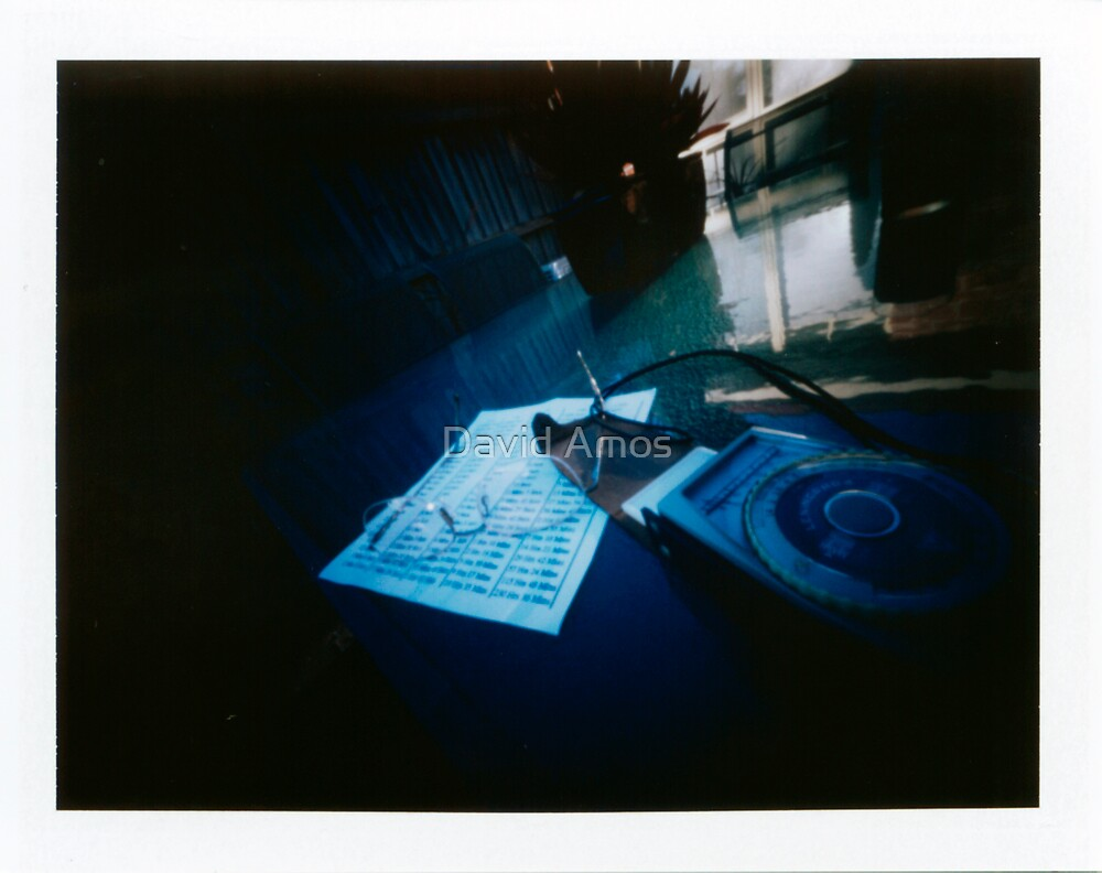 "Pinhole Poalroid - ""Light Meter"" by David Amos"