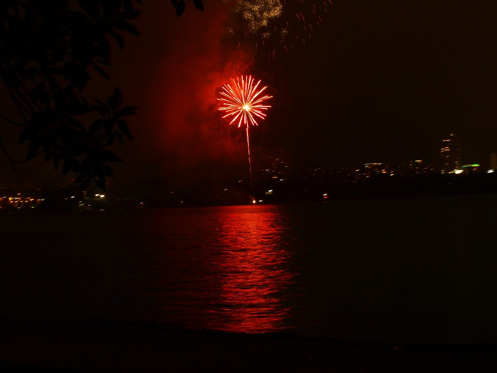 Fire works by yas74