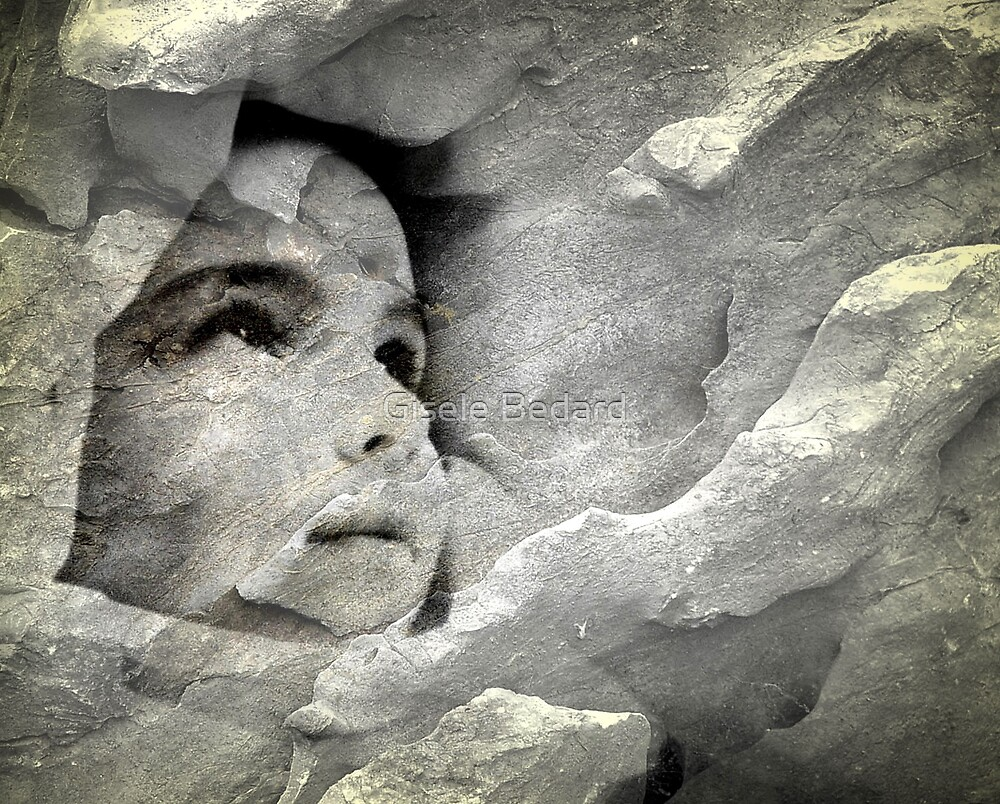 Captive Beauty  by Gisele Bedard