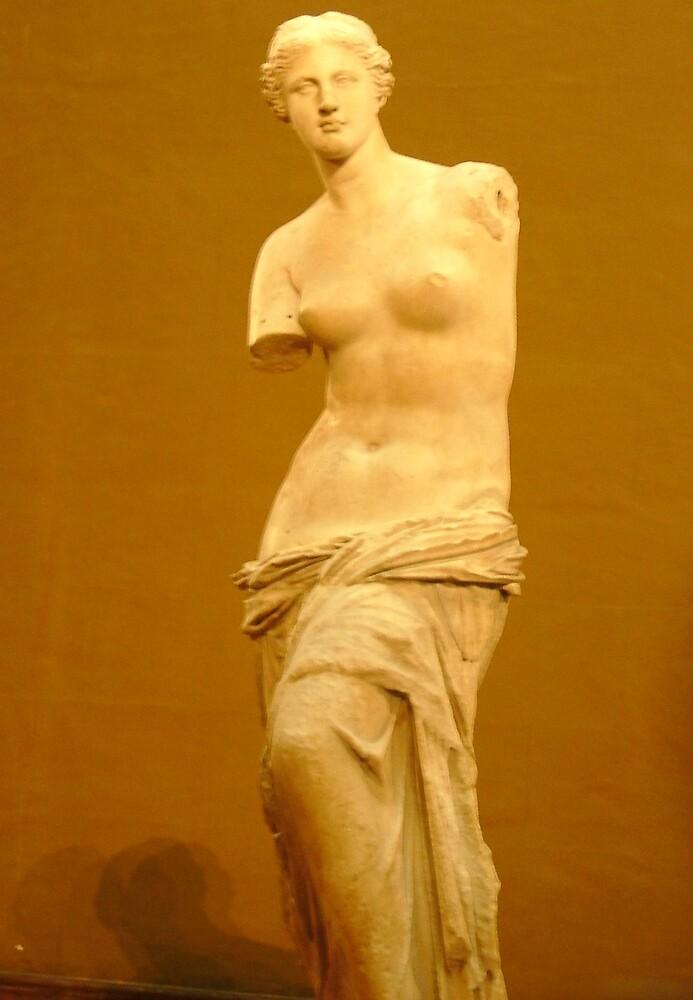 Venus Serves by veeg