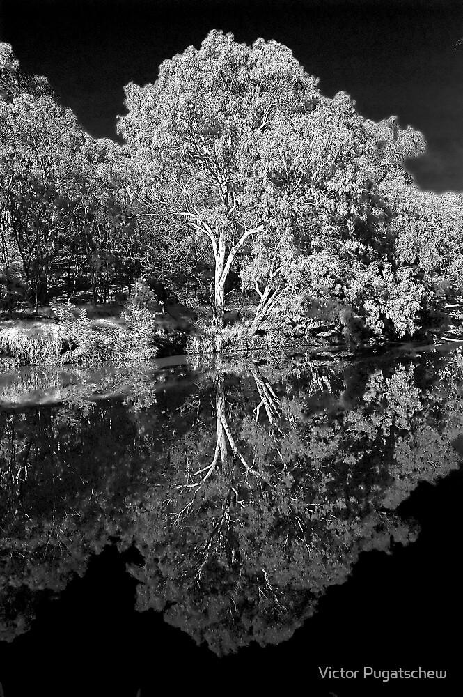 Fairfield river bend by Victor Pugatschew