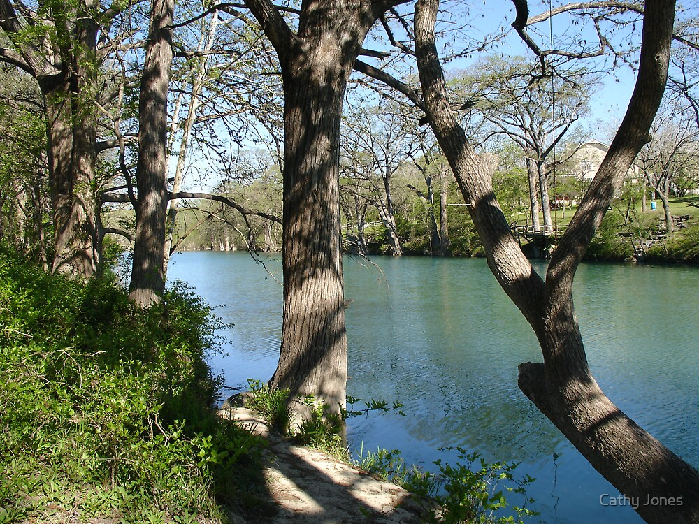 The Blanco River by Cathy Jones