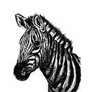 Zebra-Skizze von sandyeates
