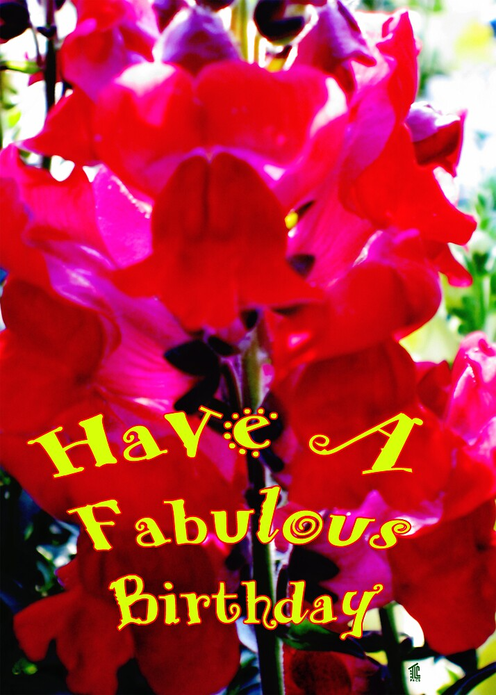Have a Fabulous Birthday by TLCGraphics