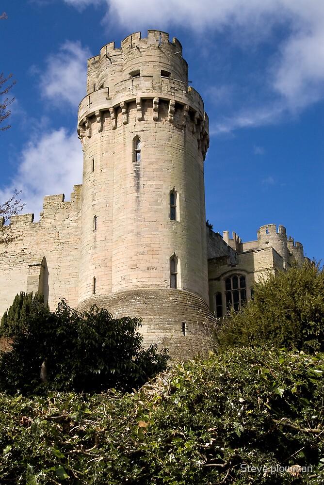 Stone tower by Steve plowman