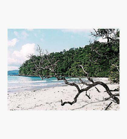Palawan Photographic Print