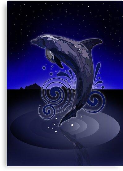 Dolphin - Night by Adam Santana