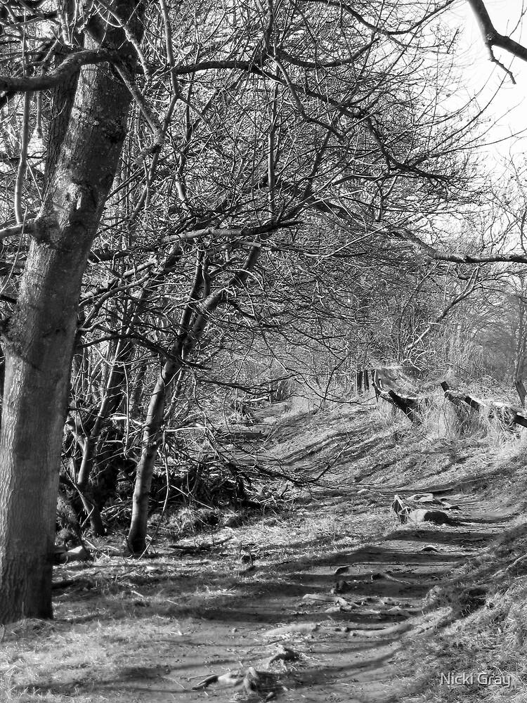 Gattonside walk by Nicki Gray