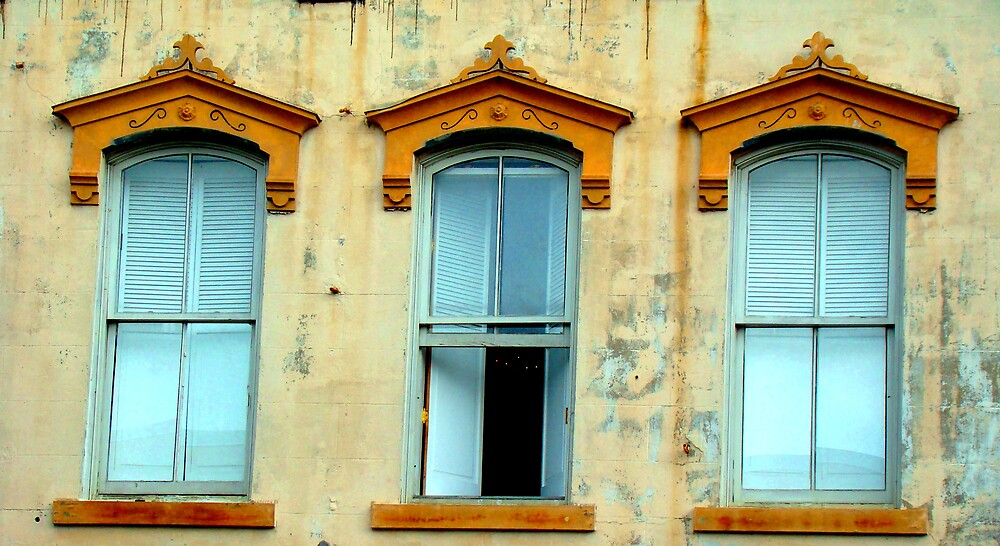 charleston window by lowcountrypen